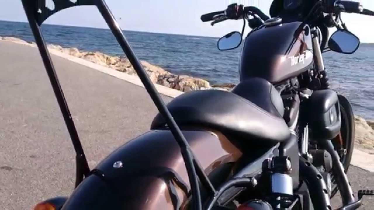 Harley Davidson Iron  Sissy Bar