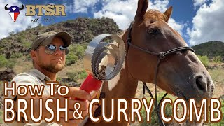 How To  Brush and Curry Comb Your Horse (Groom) -BTSR- Cavalcade Horse Trek
