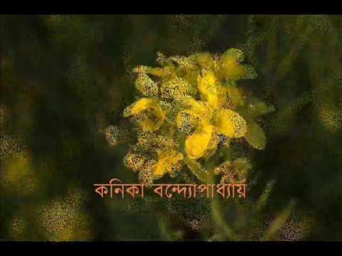 বিপুল তরঙ্গ রে  -  কনিকা বন্দ্যোপাধ্যায়