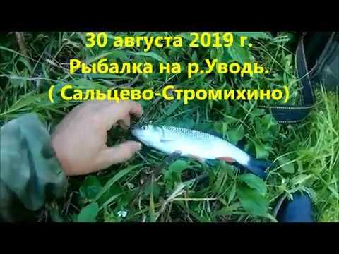 Рыбалка в Ивановской обл. на Уводи (Сальцево-Стромихино) в августе.