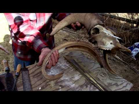 Wyoming's Tom Lucas Making Sheep Horn Bows