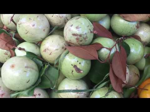 Asian Street Food, Walk Around My Village Food, Life In Cambodian Market In Phnom Penh City