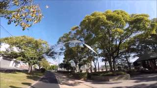1500mm wing span large ornithopter test flight