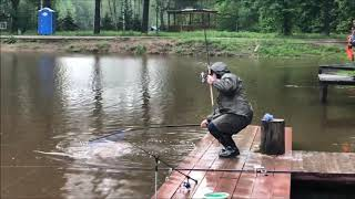 Карп на поплавочную снасть