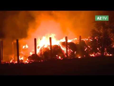 Schafstall und Altreifen brennen in Schönhausen