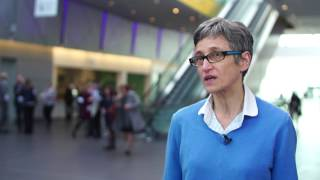 Microenvironment role in AML: talk overview