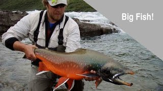 arctic char lake trout fly fishing adventure in northern canada