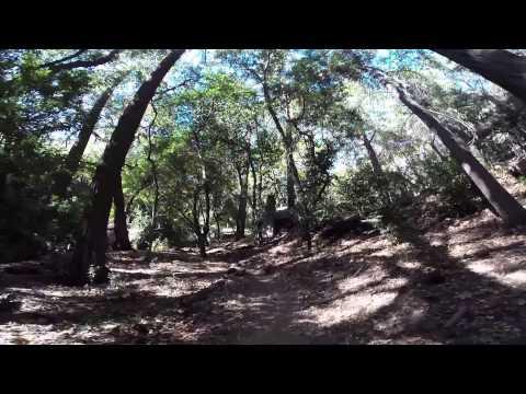 DAY HIKE: Santa Anita Canyon Big Loop
