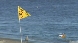 Massive Sewage Spill That Prompted Beach Closures From Long Beach To Seal Beach Contained
