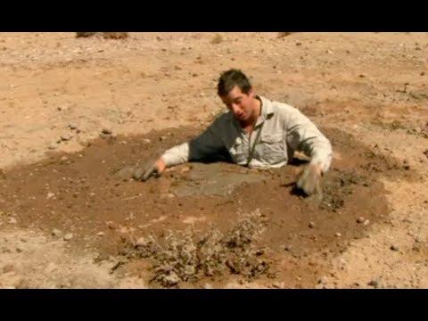 流砂から脱出する方法  | サバイバルゲーム (ディスカバリーチャンネル)