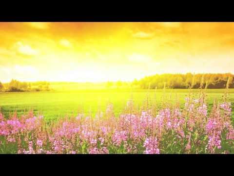 Клип Балабама - После дождя будет радуга