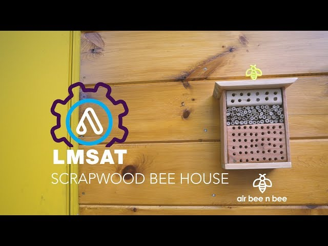 Build a bee house and save the bees! - LMSAT