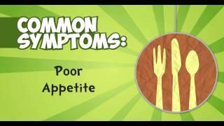 Good To Know - Pulmonary Tuberculosis Symptoms