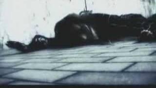 Protoplasm Remix-Rentrer En Soi