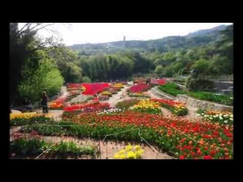 Никитский ботанический сад фото. Крым. Украина. Yalta. Ukraine. Crimea.