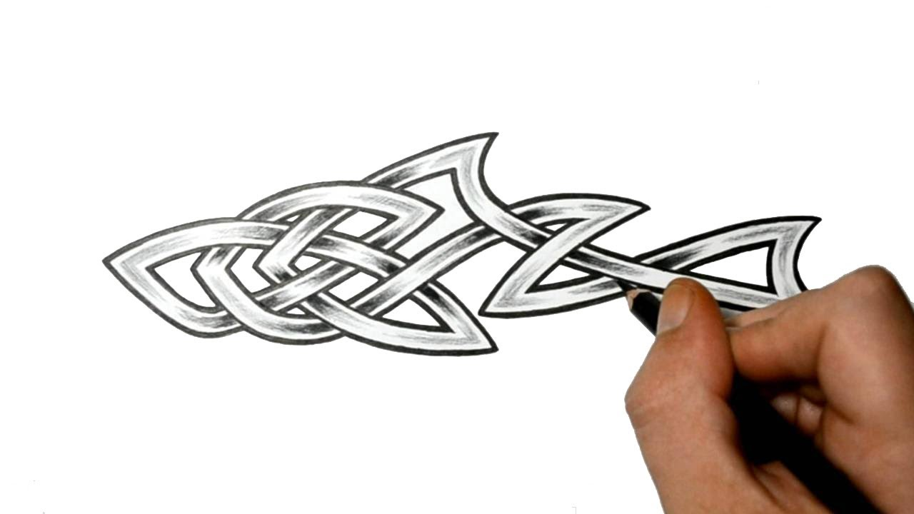 How To Draw A Shark Celtic Knot Tattoo Design Style Youtube