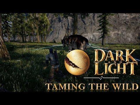 Dark and Light Basics  Taming the Wild