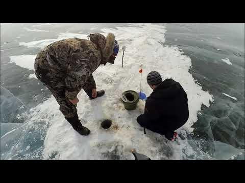 Хищник на жерлицу, весенний Байкал.