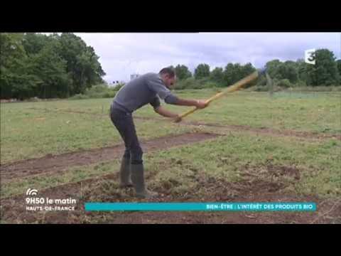 Santé, qualité, environnement : l'intérêt des produits biologiques
