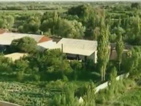 Agriculture of Uzbekistan / Usbekische Landwirtschaft