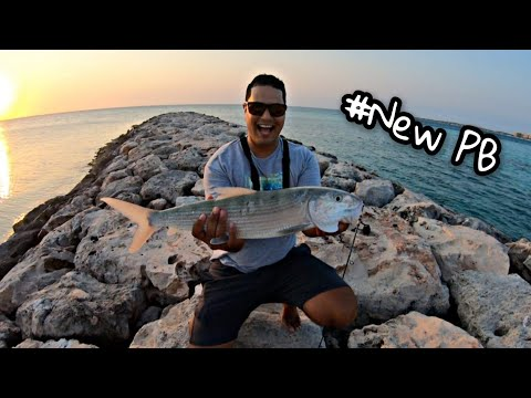 #outdoors #sport #fishing -- Fishing With Live Bait At The Jetties -- New PB-- Catch&Release ||Ep70