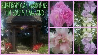 Subtropical gardens in England Thumbnail