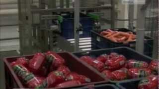видео: Автоматизированная конвейерная линия сборки заказов