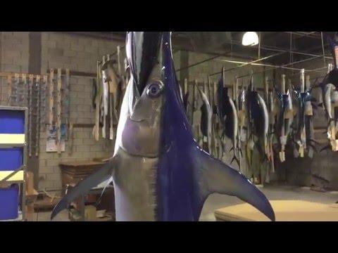 swordfish mount gray taxidermy fishmounts custom fish