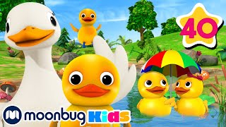 Counting Duck Song | +40 Minutes of Nursery Rhymes | Learn With LBB | #howto