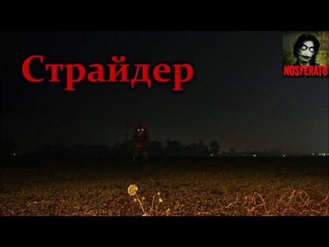 Истории на ночь - Страйдер