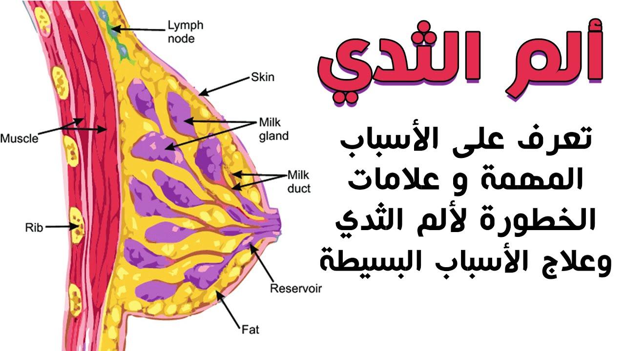 الم الثدي أنواع آلام الثدي وأسبابها وعلاجها وعلامات خطيرة مع وجع الثدي والنخز Youtube