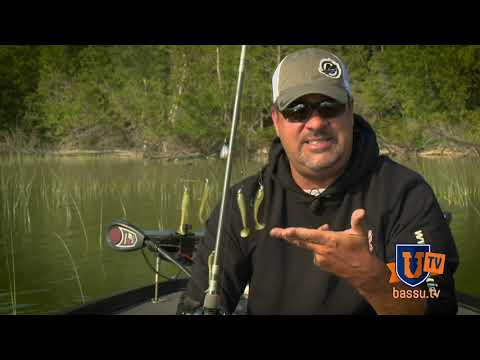 Catch DOUBLES & TRIPLES Of BASS On 1 CAST - Mark Zona