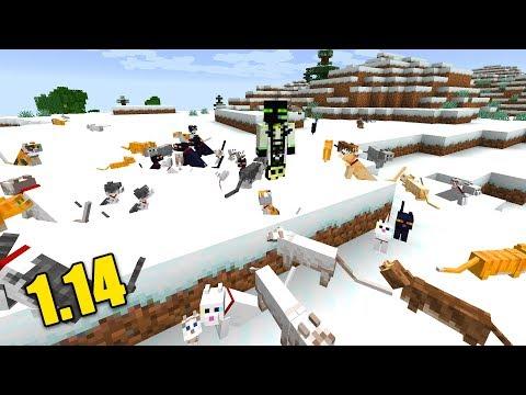 ROMAN & SEINE KATZEN FAMILIE! - Minecraft 1.14 [Deutsch/HD]