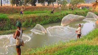 AMAZING fishing videos | fishing festival video | BIGGEST wallago fishing