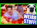 WEIRD THINGS YOU CAN BUY ONLINE! - PIZZA BED, COLORED FLAMES, PUG MASK