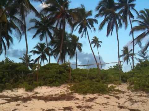 Zanzibar, Matemwe beach
