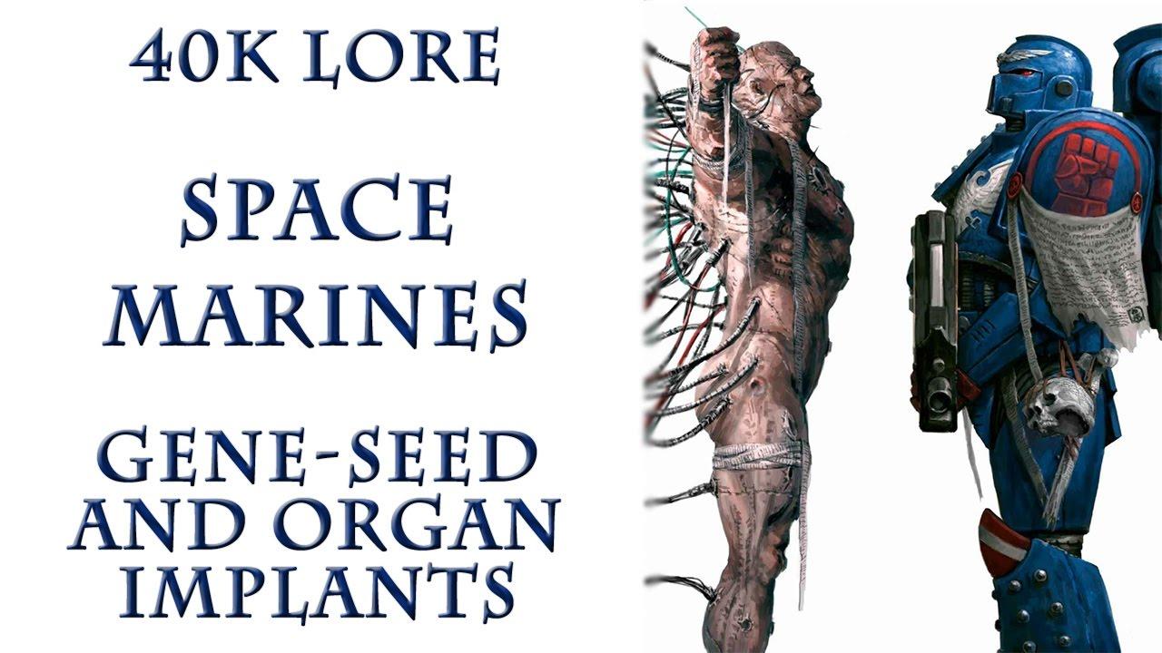 Warhammer 40k Lore - Space Marines, Gene-seed and Organ Implants ...