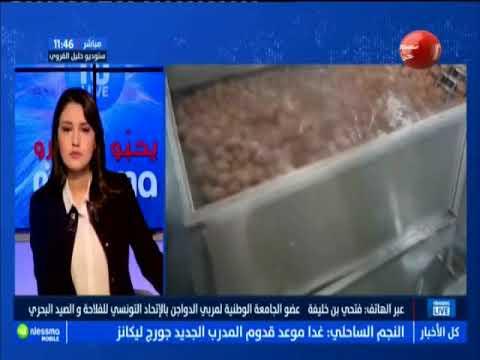 عبر الهاتف : فتحي بن خليفة عضو الجمعة الوطنية لمربي الدواجن بالإتحاد التونسي للفلاحة و الصيد البحري