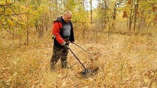 Осенний коп в лесах северного Донбасса   Поиск монет металлоискателем