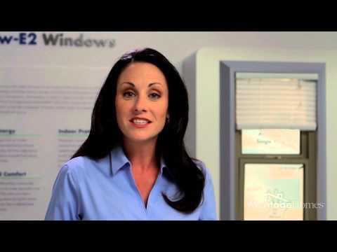 Energy Efficient Windows in Allen