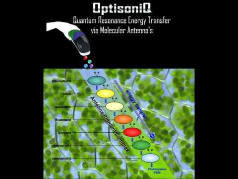 Quantum Resonance Energy Transfer