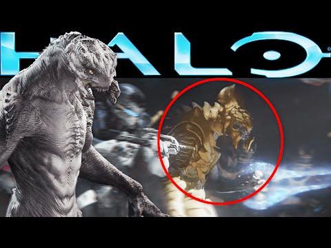Arbiter Thel 'Vadam's Origin Story - Halo Lore