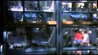 Povolání: Reportér (1975) - trailer