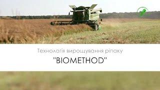 №25 Ріпак  Технологія вирощування БІОМЕТОД