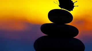 3 Hour Zen Meditation Music: Soothing Music, Healing Music, Calming Music, Relaxation Music, ☯2445