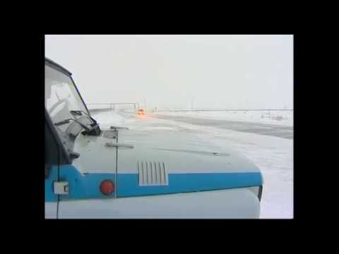 Локомотив сбил Мишку. Машинист забыл про тормоза.