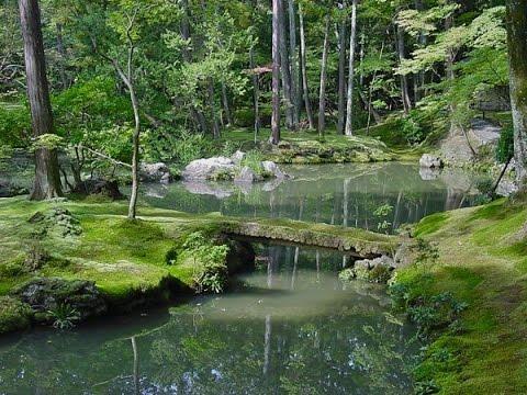 Japan Kyoto Kokadera Garden Saiho Ji Jardin De Mousse Youtube