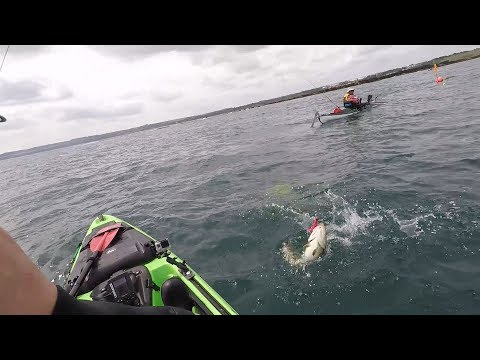 kayak-fishing-league-round-2-(cod-on-soft-plastics)