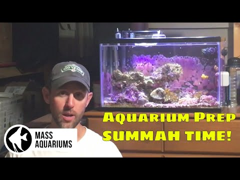 How To: Prep Your Aquariums for VACATION!