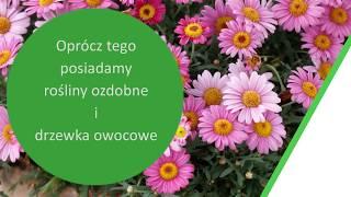 serwis sprzętu ogrodniczego naprawa sprzętu ogrodniczego Ostrzeszów Oczko Tadeusz Bilski